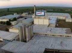 Η ακόρεστη δίψα για κέρδος έκλεισε το εργοστάσιο της «ΔΕΛΤΑ Τρόφιμα ΑΕ» στο Πλατύ Ημαθίας
