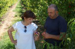 Επαφές της Φρόσως Καρασαρλίδου με ΕΛΓΑ και αγρότες για τις καταστροφές από τη θεομηνία . Άμεση στελέχωση του τοπικού ΕΛΓΑ με επιπλέον γεωπόνους