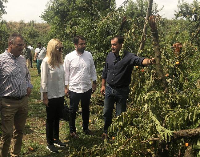 ΑΓΡΟΤΙΚΟΣ ΣΥΛΛΟΓΟΣ ΓΕΩΡΓΩΝ ΒΕΡΟΙΑΣ : Αυτοψία στις κατεστραμμένες φάρμες του Νομού Ημαθίας