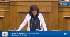 Φρόσω Καρασαρλίδου: Στη Βουλή το θέμα της επιβολής δασμών από ΗΠΑ στις κονσέρβες ροδάκινου