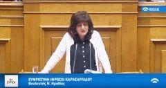 Φρόσω Καρασαρλίδου: Ερώτηση στη Βουλή για την κάλυψη των κενών στην ειδική αγωγή