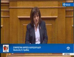 Φρόσω Καρασαρλίδου: Το νομοσχέδιο της κυβέρνησης για τις επενδύσεις εξυπηρετεί τους λίγους και όχι την εθνική οικονομία
