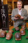 Επιστήμονες χρονολόγησαν με ακρίβεια απολιθώματα του Homo erectus ηλικίας περίπου 110.000 ετών