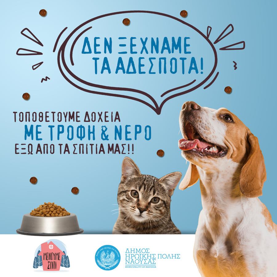 Αφίσα του Δήμου Νάουσας σχετικά με την μέριμνα για την φροντίδα αδέσποτων ζώων