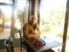 Ηλίας Τσέχος: 'Ενας πικρός Ιός