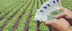 Αίτημα Κ. Καλαϊτζίδη για άμεση  εξόφληση αγροτικών αποζημιώσεων