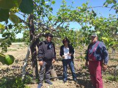 Επαφές Φρόσως Καρασαρλίδου με ΕΛΓΑ και αγρότες για τις καταστροφές από τις πρόσφατες θεομηνίες . Ζητά άμεση στελέχωση του τοπικού ΕΛΓΑ με επιπλέον γεωπόνους