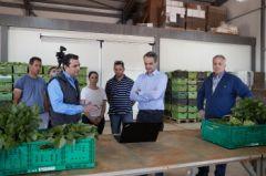 ΚΥΒΕΡΝΗΤΙΚΕΣ ΕΞΑΓΓΕΛΙΕΣ ΓΙΑ ΤΟΝ ΠΡΩΤΟΓΕΝΗ ΤΟΜΕΑ: Μακριά από τα οξυμένα προβλήματα της πλειοψηφίας των αγροτοκτηνοτρόφων