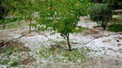 ΚΚΕ: Να αποζημιωθούν οι αγρότες της Πέλλας και της Ημαθίας για τις ζημιές από τον καιρό