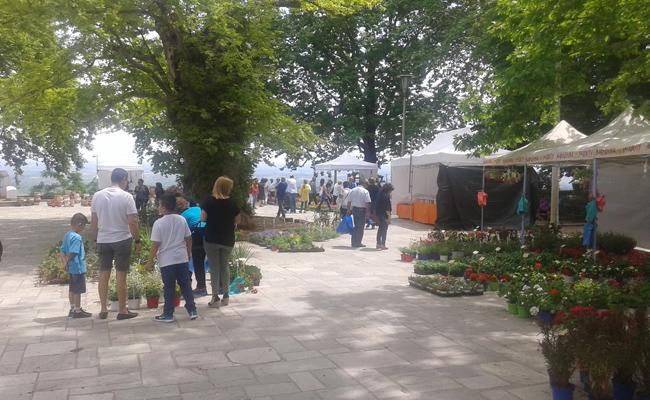 11η Ανθοκομική Έκθεση του Δήμου Νάουσας