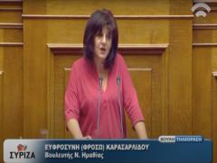 Φρόσω Καρασαρλίδου: Καμία απάντηση στα πολιτικά ερωτήματα που κατέθεσα σε ερώτηση για το Αιολικό Βερμίου