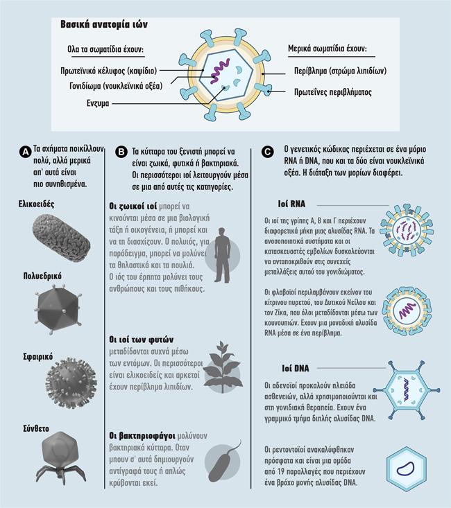 Συμβιώνοντας με τρισεκατομμύρια ιούς