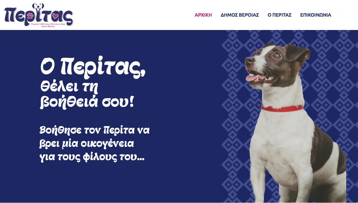 Ανέβηκε η νέα ιστοσελίδα του Δήμου Βέροιας για την υιοθεσία αδέσποτων σκύλων