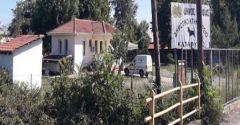 Eγκρίθηκε   η ένταξη στο Πρόγραμμα «ΦΙΛΟΔΗΜΟΣ II» για το καταφύγιο ζωών συντροφιάς  Δήμου Βέροιας.