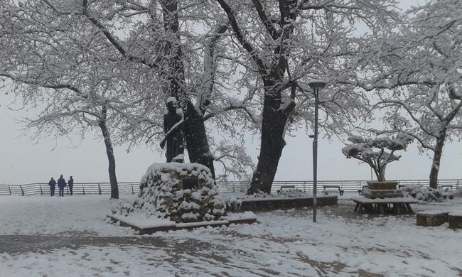 ΦΩΤΟρεπορτάζ από τη χιονισμένη Βέροια