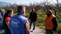 ΠΕΛΛΑ ΚΑΙ ΗΜΑΘΙΑ: Περιοδεία του ΚΚΕ και συναντήσεις με αγρότες που επλήγησαν από τον πρόσφατο παγετό