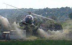 Διενέργεια έκτακτων ψεκασμών για την καταπολέμηση κουνουπιών στις αγροτικές περιοχές ρυζοκαλλιεργειών του κάμπου Θεσσαλονίκης και Ημαθίας