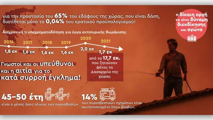 Μόνο το 0,04% του προϋπολογισμού για την προστασία των δασών!