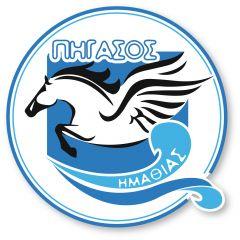 Θετικό πρόσημο για την προαγωνιστική ομάδα του Πήγασου στους θερινούς αγώνες