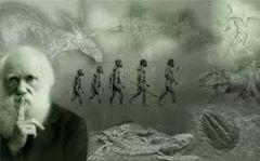 Ο Κάρολος Δαρβίνος, κατέστησε «περιττό» το ρόλο του Θεού στη «δημιουργία» του ανθρώπου...