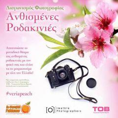 Διαγωνισμός φωτογραφίας με θέμα τις ανθισμένες ροδακινιές