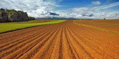 Παράταση ισχύος αποφάσεων παραχώρησης, κατά χρήση, αγροτικών ακινήτων στην περιοχή Έλους Κλειδίου.